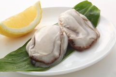 Raw oyster with lemon Royalty Free Stock Photography