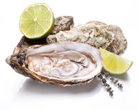 Raw oyster and lemon on a whte background. Royalty Free Stock Photo