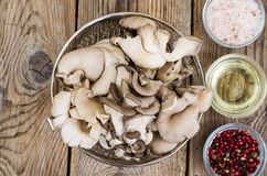 Raw oyster mushrooms on wooden table. Studio photon Royalty Free Stock Photography