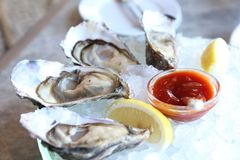 Raw Oyster Station in Restaurant. Oyster Station, Oysters served on ice and with a piece of lemon on the side, salt-water bivalve molluscs , from Africa Royalty Free Stock Photos