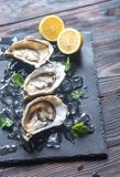 Raw oysters on the black stone board. Close up Royalty Free Stock Photography