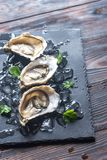 Raw oysters on the black stone board. Close up Stock Photo