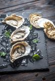 Raw oysters on the black stone board. Close up Stock Image