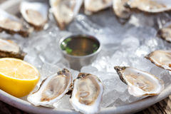 Raw oysters Royalty Free Stock Photos