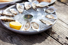 Raw oysters. Fresh raw oysters served with lemon and sauce at the plate with ice Stock Photo