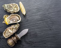Raw oysters. Raw oysters on the graphite board Stock Photo