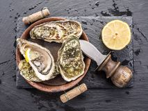 Raw oysters on the graphite. Stock Image