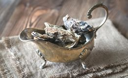 Raw oysters in the gravy boat. Close up Royalty Free Stock Photography