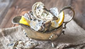 Raw oysters in the gravy boat. Raw oysters with lemon in the gravy boat Stock Photos