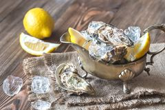 Raw oysters in the gravy boat. On the wooden table Stock Image