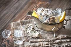 Raw oysters in the gravy boat. On the wooden table Stock Photos