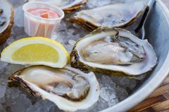 Raw Oysters on ice. Raw Malpaque oysters on ice with lemon and seafood sauce Royalty Free Stock Image