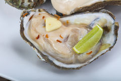 Raw oysters with lime Royalty Free Stock Images
