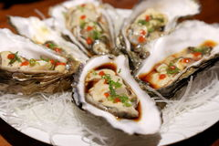 Raw oysters. Raw oyster prepared on a plate Stock Photos