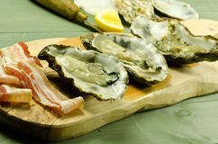 Raw oysters and pancetta Stock Photos