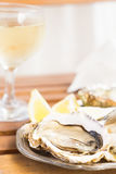 Raw oysters shells. Raw fresh oysters shells and glass of white wine Stock Photos
