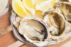 Raw oysters shells Royalty Free Stock Images