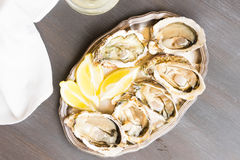 Raw oysters shells. And glass of white wine, top view on wooden table Royalty Free Stock Images