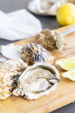 Raw oysters shells. One open and closed ones Stock Photo