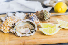 Raw oysters shells. One open and closed ones with lemons Royalty Free Stock Image