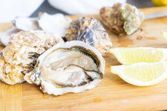 Raw oysters shells. One open and closed ones with lemons slices Stock Photo