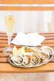 Raw oysters shells Stock Photography