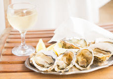 Raw oysters shells Royalty Free Stock Photo