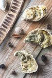 Raw oysters on the wooden background. Top view Royalty Free Stock Image
