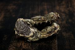 Raw oysters on the wooden table, background. Raw oysters on wooden table background France Royalty Free Stock Image
