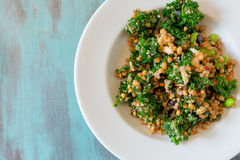 Raw Paleo Kale and Quinoa Superfood Salad Royalty Free Stock Photos