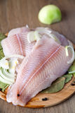 Raw Pangasius Royalty Free Stock Photo