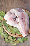 Raw Pangasius Stock Photo