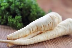 Raw parsley roots. And fresh parsley leaves Stock Image