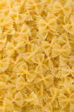 Raw pasta as whole background Royalty Free Stock Images