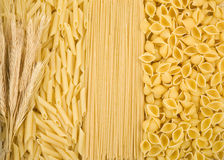 Raw pasta and ear of wheat Stock Photo