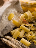 Raw pasta with ears and flour Stock Images