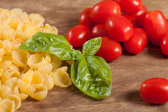 Raw pasta with ingredients. Stock Images