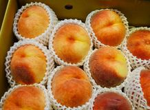 Raw peaches at local market. Raw peaches for sale at local market in Hakodate, Hokkaido, Japan Royalty Free Stock Photos