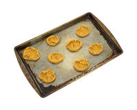 Raw peanut butter cookies on pan Royalty Free Stock Photos