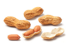 Raw Peanut Stock Photo