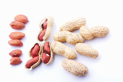 Raw peanuts. With skin on a white background royalty free stock photos