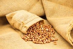 Raw peanuts Royalty Free Stock Photography