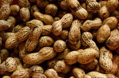 Raw Peanuts Royalty Free Stock Photos