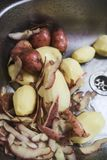 Raw peeled potatoes lying in the kitchen sink. The raw peeled potatoes lying in the kitchen sink royalty free stock images
