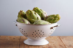 Raw pile of artichokes on colander Royalty Free Stock Images