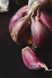 Raw pink garlic Royalty Free Stock Photography
