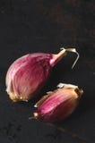 Raw pink garlic Stock Images