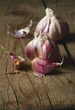 Raw pink garlic Royalty Free Stock Image