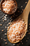 Raw Pink Himalayan Sea Salt Stock Images