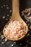 Raw Pink Himalayan Sea Salt Stock Photos